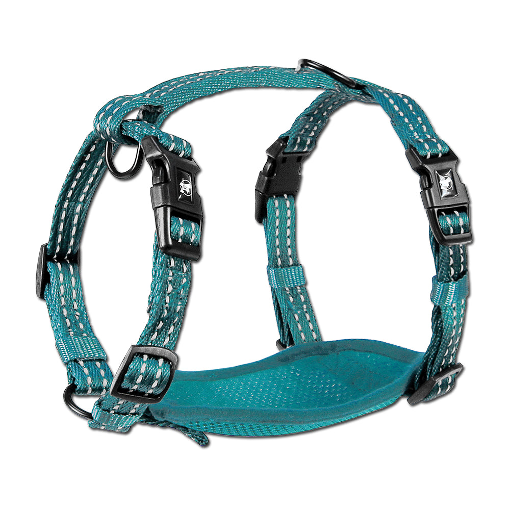 Alcott Adventure Blue Nylon Harness