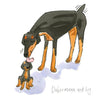 Dobermann and Boy