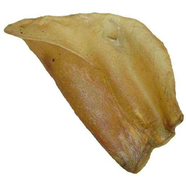 Large Natural Cow Ear