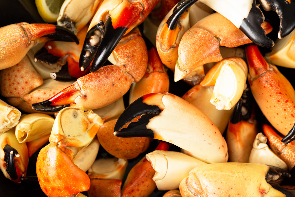 Here at Patas Stone Crab we offer only the best. Fresh, delicious, mouth-watering Florida caught stone crab delivered to your front door anywhere in the U.S and select countries! Order online now!