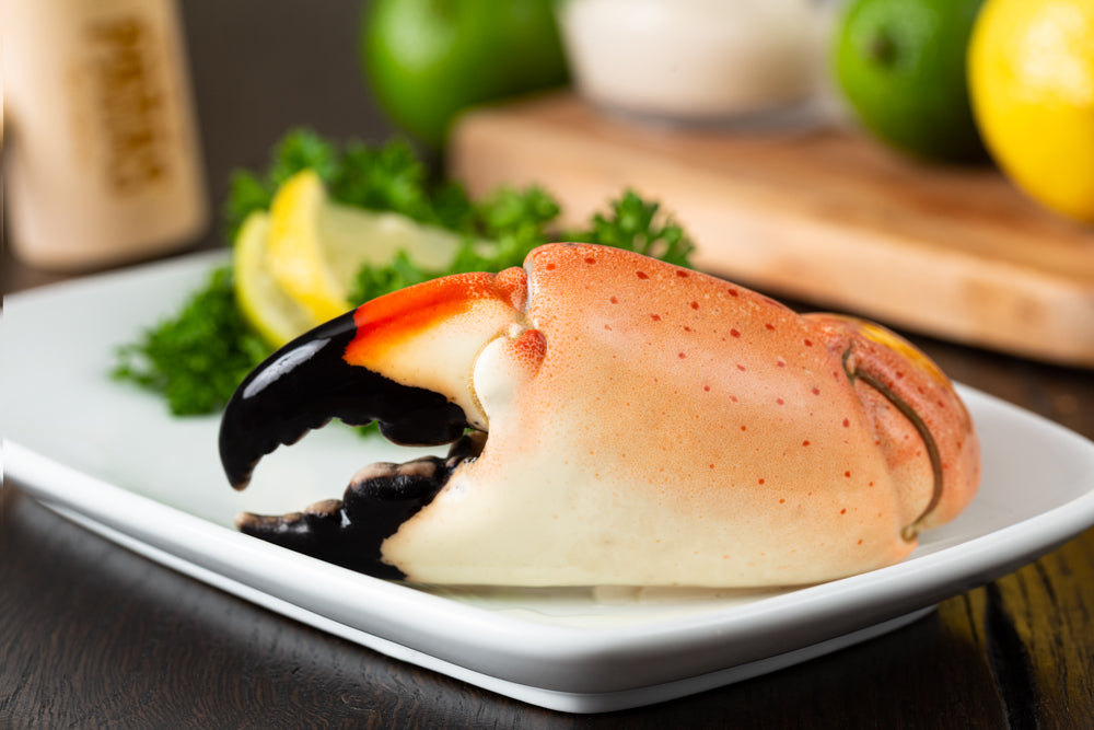 Stone Crab by the Claw Fresh from Florida with overnight delivery across the US and select international locations