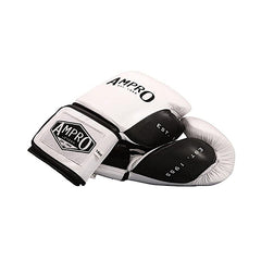 boxing gloves by Ampro
