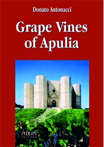 Grape Vines of Apulia