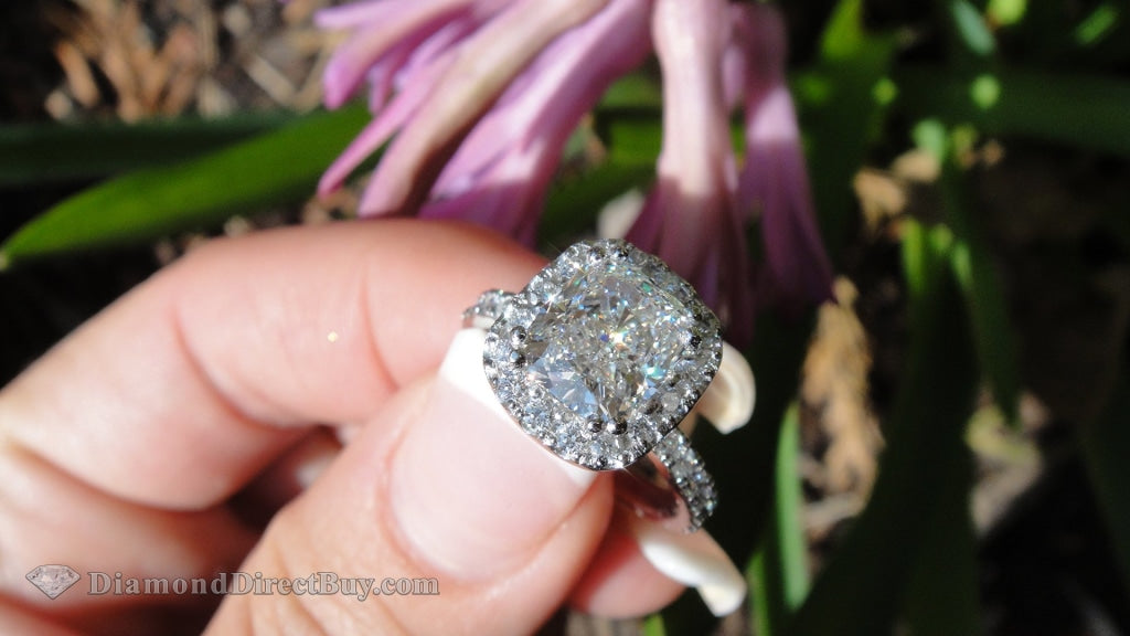 3.40 Halo Cushion Engagement Ring 2.50 I /si1 Center Rings