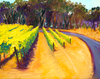 Bring home Sonoma Valley with