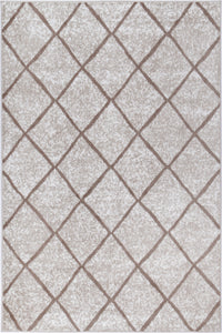 Paisley Diamond Latte Rug