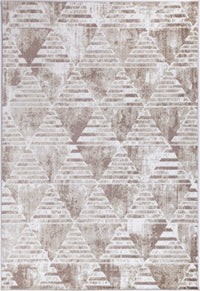 Paisley Transitional Geometric Latte Rug