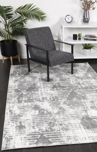 Paisley Transitional Geometric Silver Rug