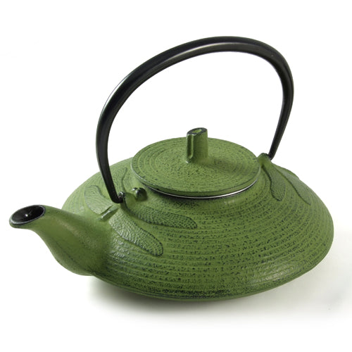 Iwachu Iwachu Cast Iron Teapot With Dragonfly Pattern In Green