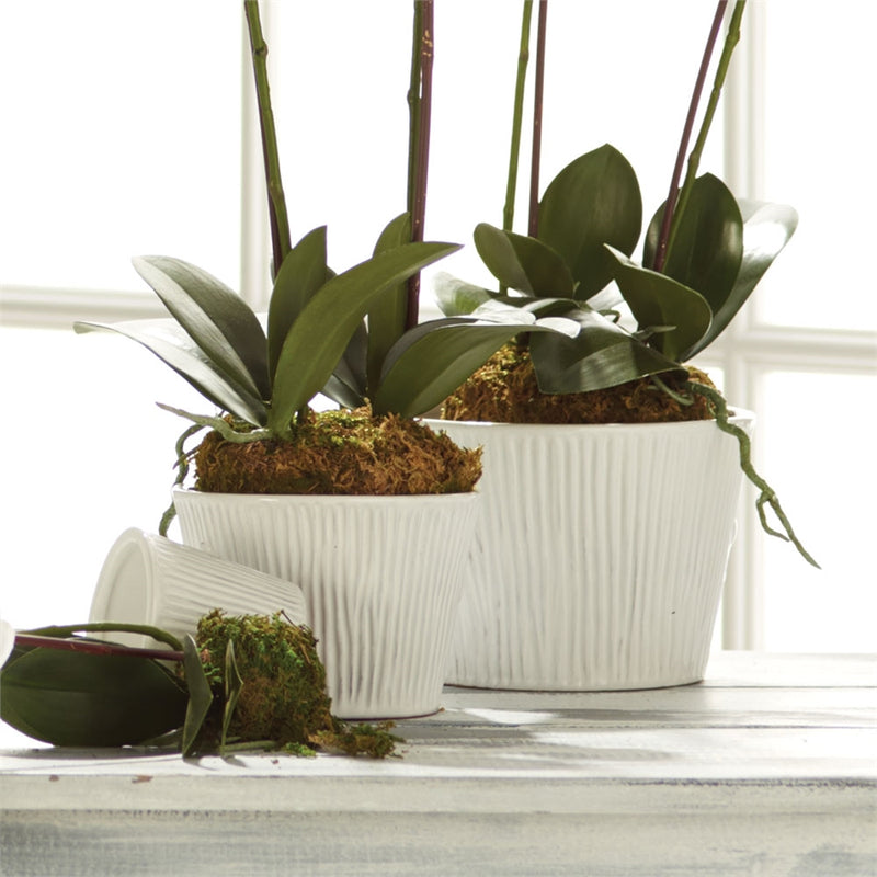 Napa Home & Garden Sinclair Cachepot, Set of 3 Wht