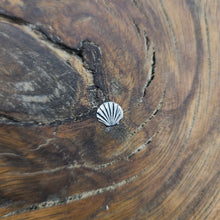 Load image into Gallery viewer, Titanium Jewelry Seashell (P050)