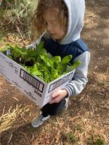 How to Encourage Your Child to Love Gardening