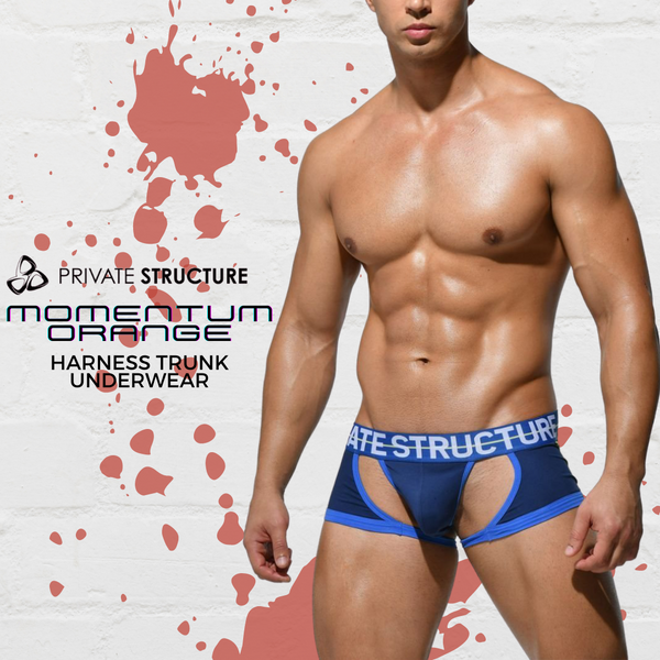 Air it Out & Look Sexy in this Private Structure Harness Trunk Underwear!