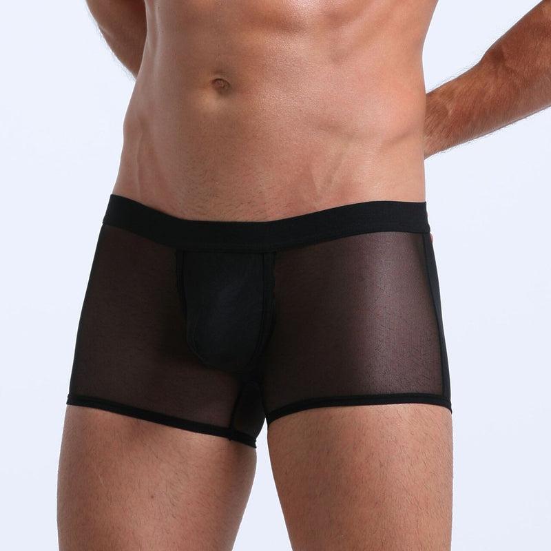 Mens Stretch Mesh Sheer Boxer Briefs with Pouch Front Black