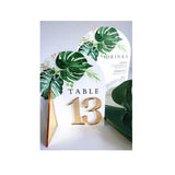 MONSTERA TABLE NUMBER SET