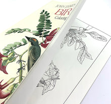 Load image into Gallery viewer, The Harley Gallery Shop Online // John James Audubon Birds Colouring Book