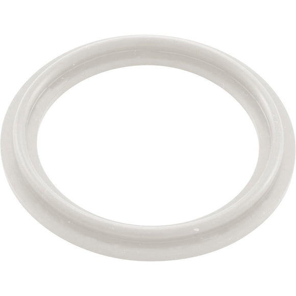 O-Ring/Gasket, Waterway 2