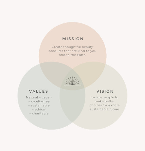 Mission Vision Values Company Policy