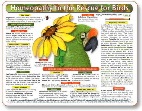 Homeopathy to the Rescue for Birds Laminated Remedy Card