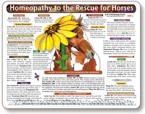 Homeopathy to the Rescue for Horses Laminated Remedy Card
