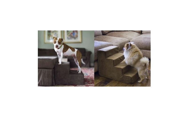 Purchasing Pup Stairs? Consider these tips.