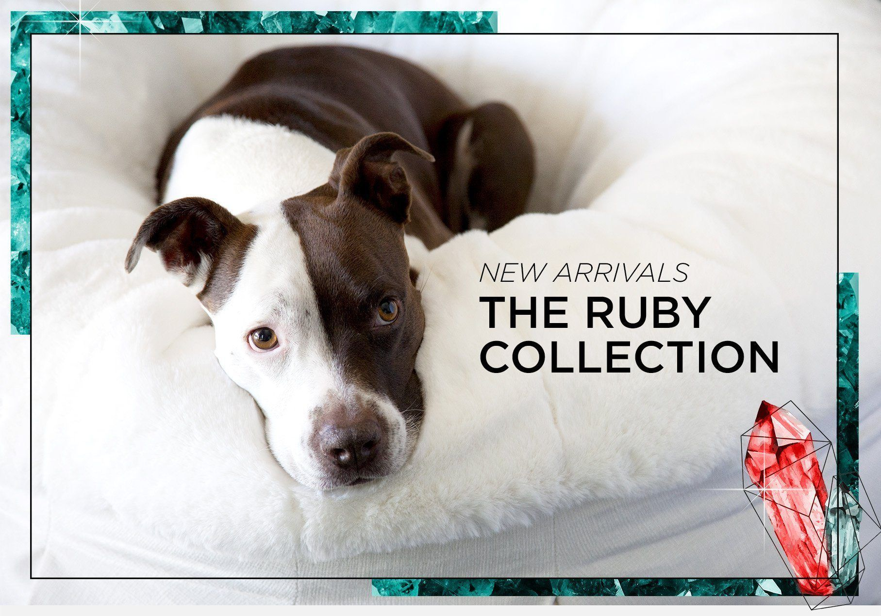 NEW Ruby Collection