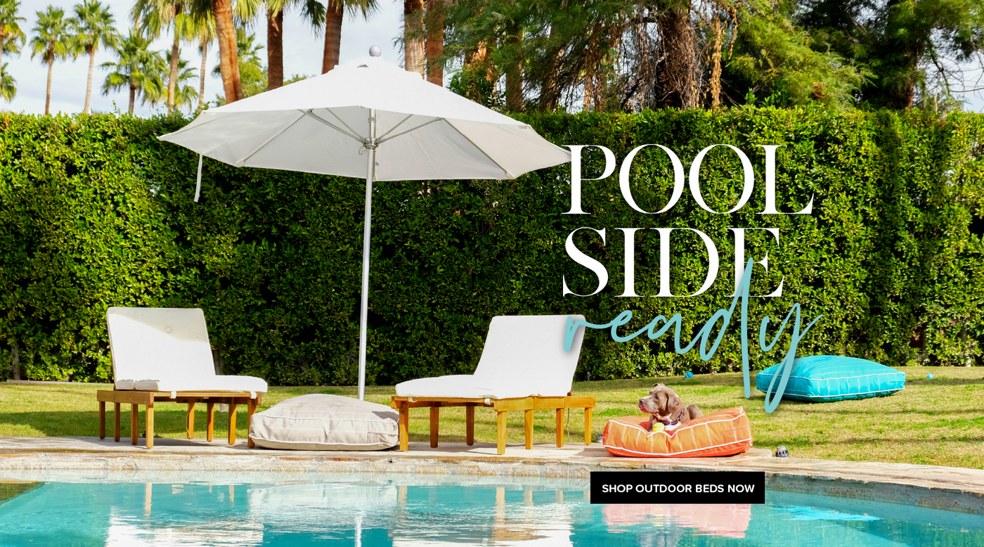 Get Pool Side Ready With Animals Matter Outdoor Bed.
