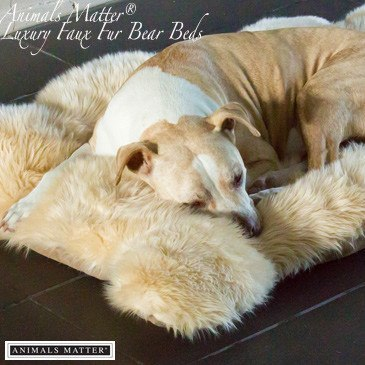 Animals Matter® Luxury Shag Bear Bed - Animals Matter - 1