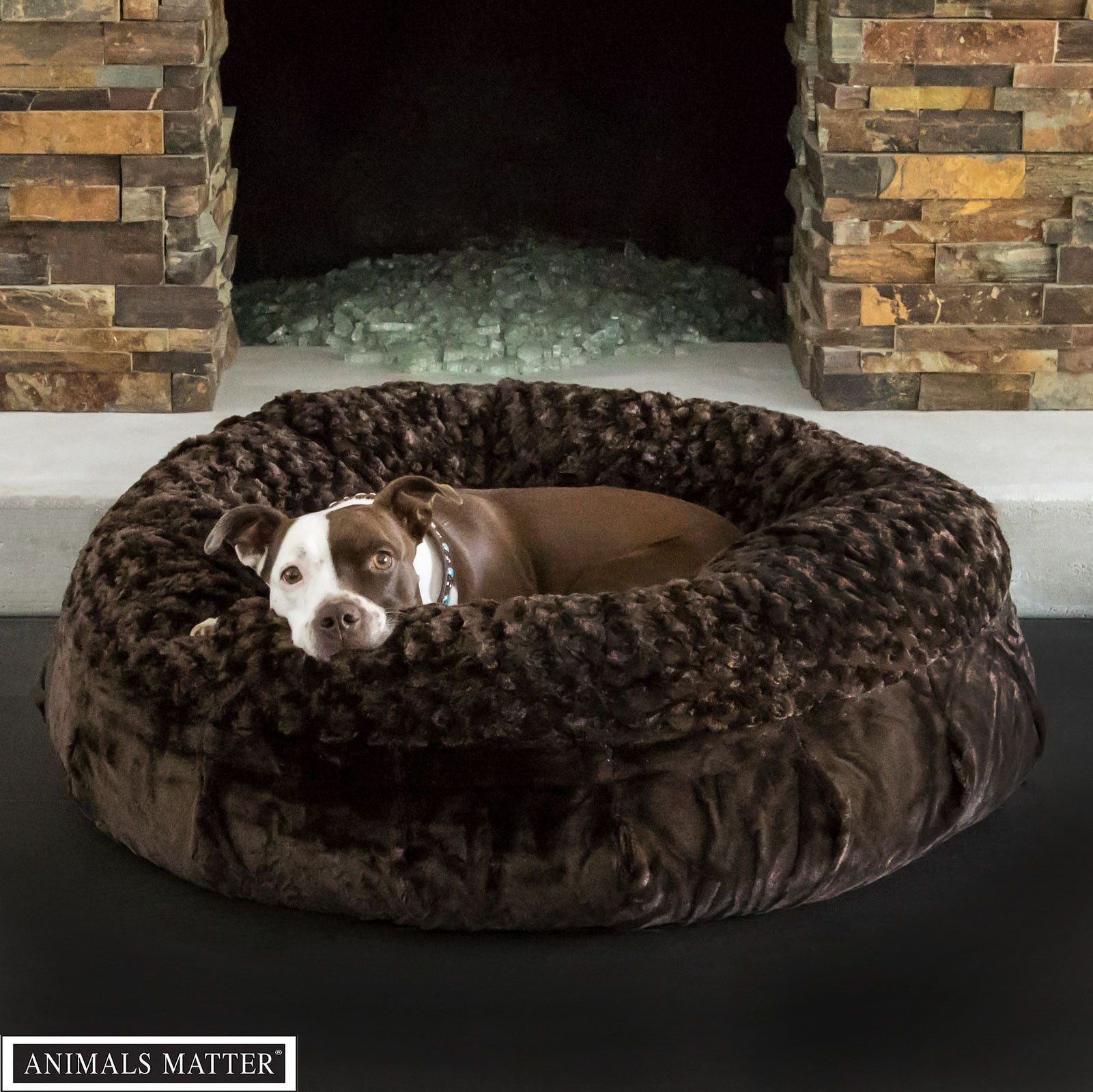 Overstuffed Luxury Sofa Dog Bed Interesting Sealy Dog Bed With