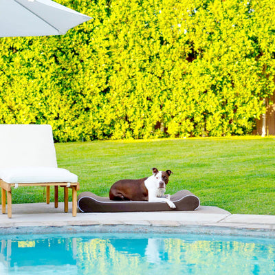 Animals Matter® Outdoor Ortho Contour Lounger with Waterproof Cover Luxury Dog Bed Chocolate