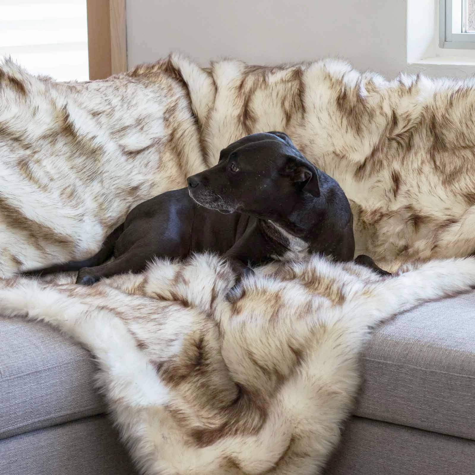 Animals Matter Faux Fur Shag Luxury Dog Blanket Brown Tip White