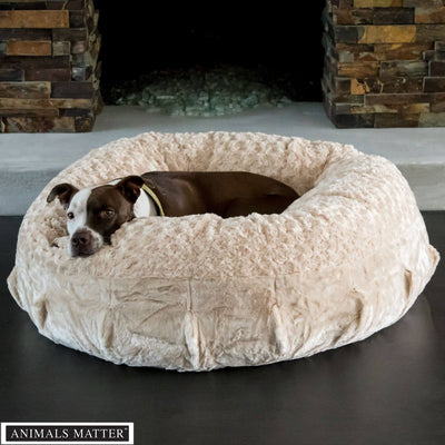 Animals Matter Katie Puff Ortho Camel Luxury Dog Bed