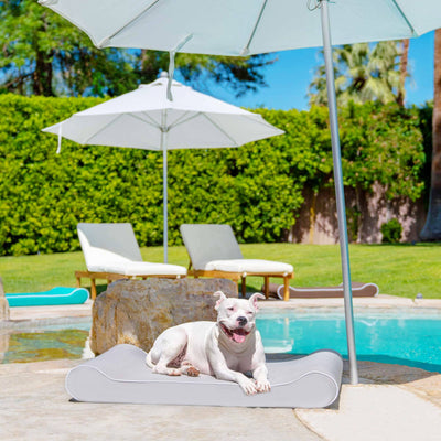 Animals Matter® Outdoor Ortho Contour Lounger with Waterproof Cover Luxury Dog Bed Gray