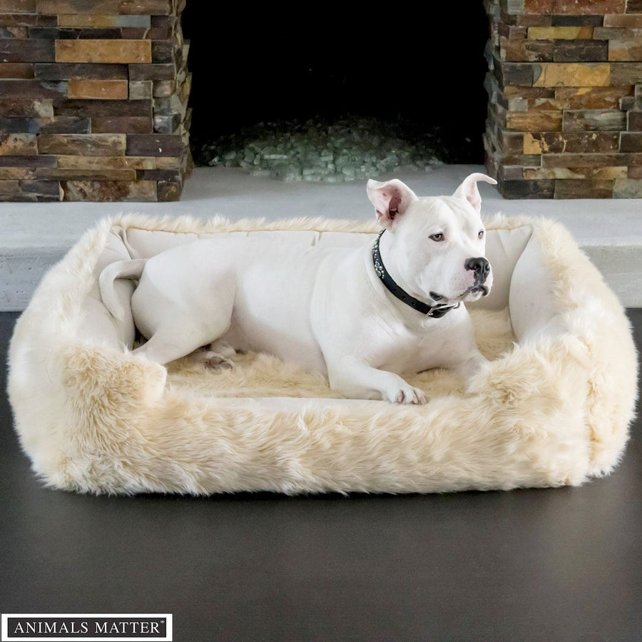 Animals Matter Faux Fur Shag Lounger Orthopedic Gray Luxury Dog Bed