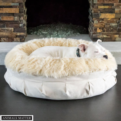 Animals Matter Faux Fur Shag Puff Orthopedic Camel Luxury Dog Bed