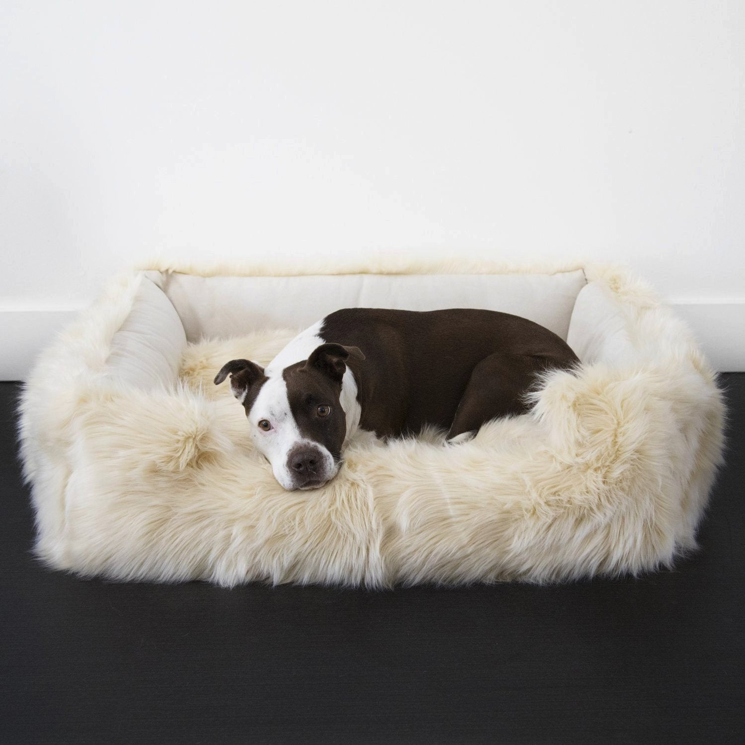 luxury dog beds. Animals Matter Faux Fur Shag Lounger Ortho Luxury Dog Bed Camel Beds