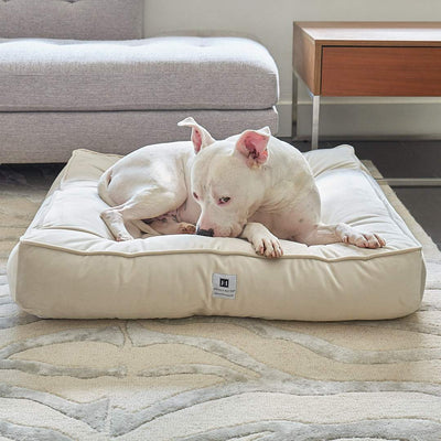 Animals Matter Ali Jewel Ortho Square Luxury Dog Bed Diamond Sand