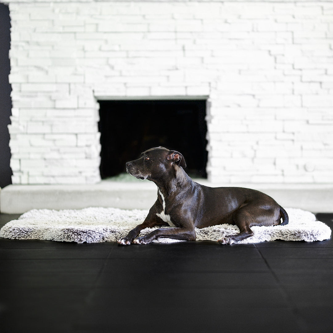 Animals Matter Frosted Charcoal Orthopedic Snug Rug Bed
