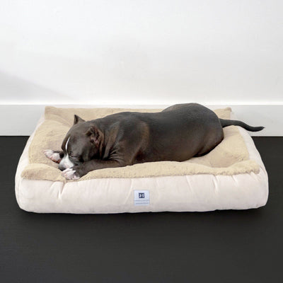 Animals Matter® Hudson Lounger Orthopedic Luxury Dog Bed