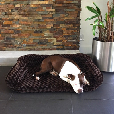 Animals Matter Katie Puff Sydney Orthopedic Luxury Dog Bed Chocolate