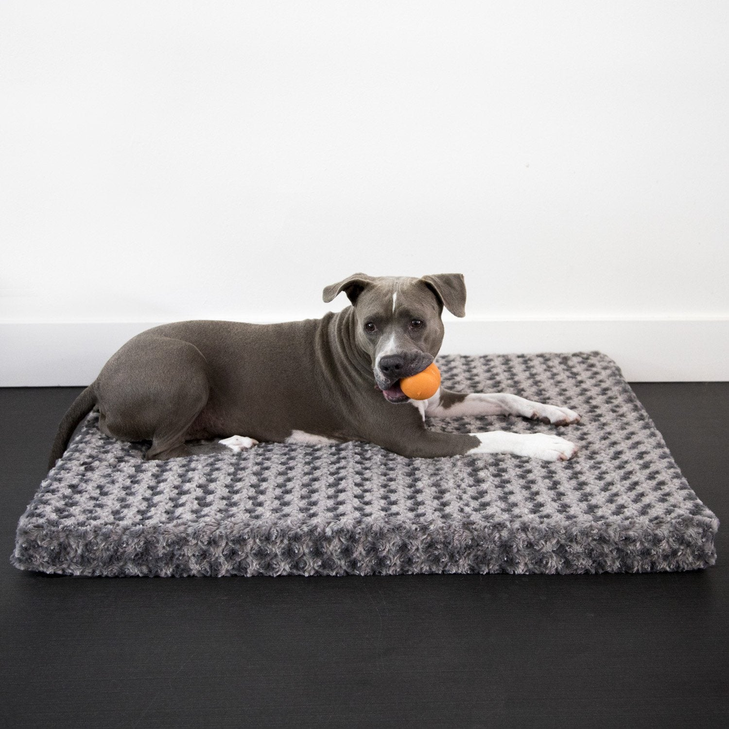 Animals Matter Katie Puff Orthopedic Rectangle Luxury Dog Bed Charcoal