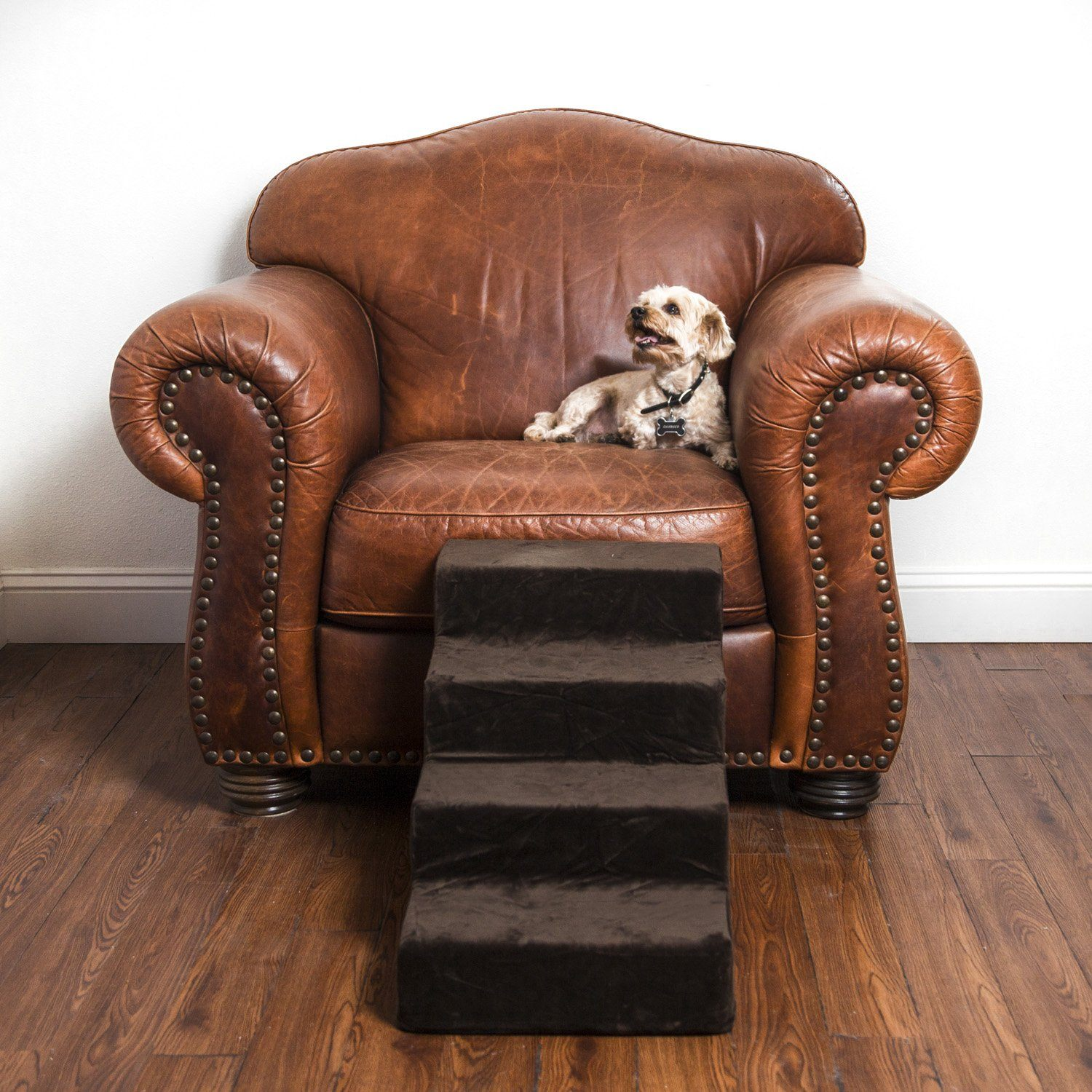 L.A. Dog Company® Pup Stairs - Animals Matter