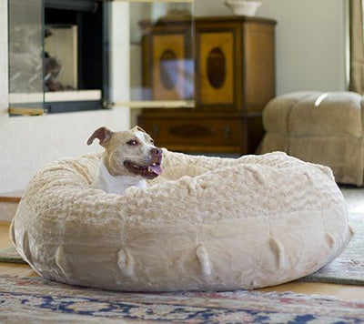 Animals Matter Katie Puff Luxury Dog Bed Camel