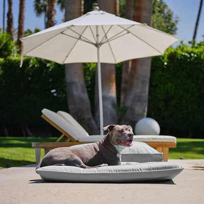 Animals Matter Raine Outdoor Futon Gray Luxury Dog Bed