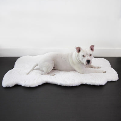 Animals Matter Ruby Orthopedic Luxury Dog Bed Rug Ivory