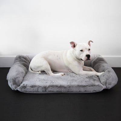 Animals Matter Ruby Sydney Orthopedic Luxury Dog Bed Light Gray