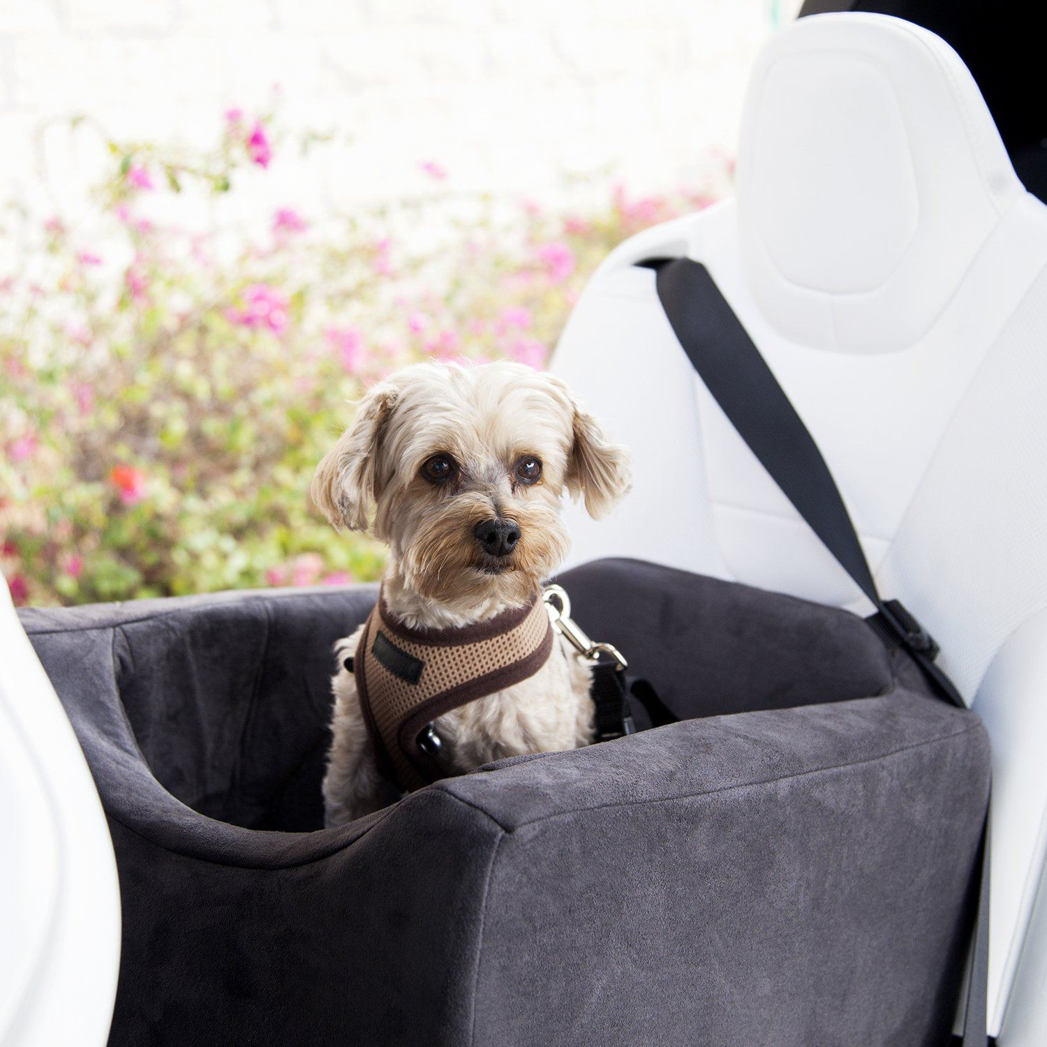 Animals Matter® Companion Car Seat® Charcoal
