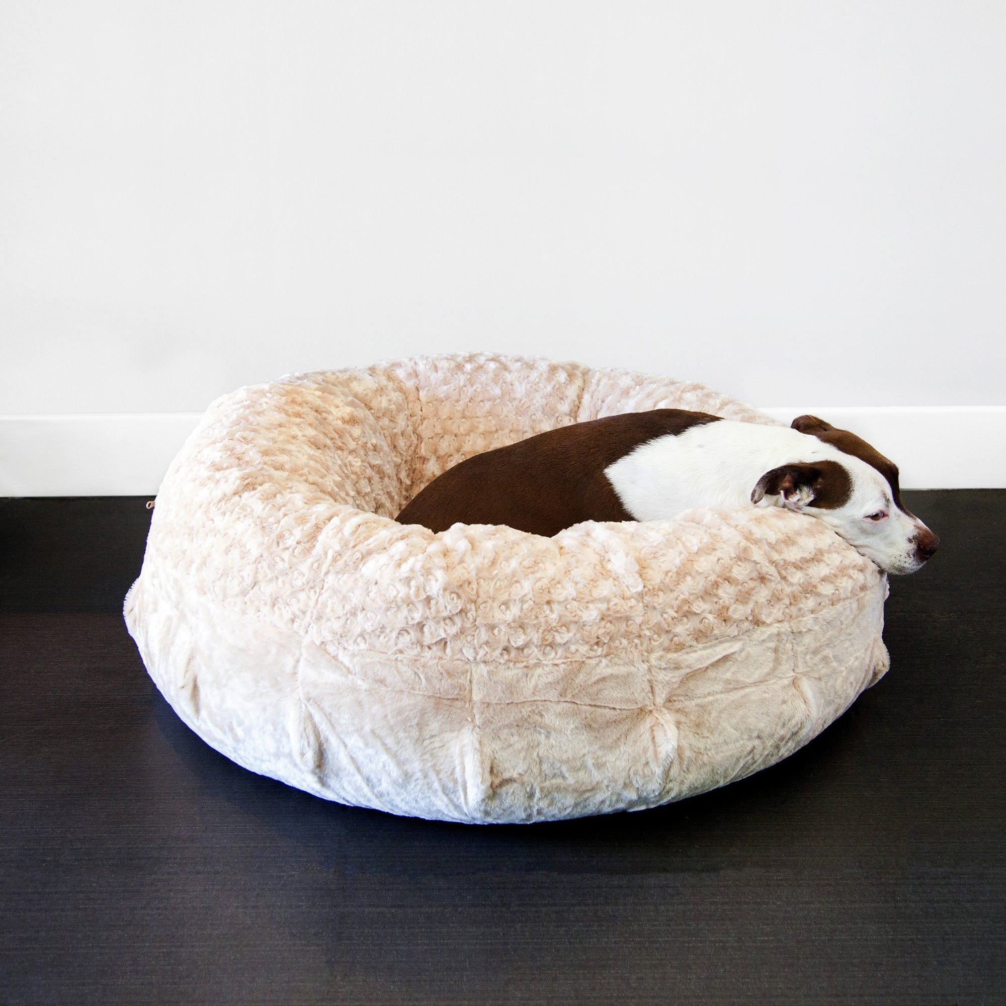 cots cosiest beds pets luxury reviews couches and the dog canine best your companion for expert bed