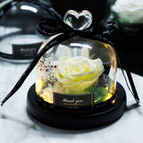 The Beauty And Beast Eternal Real Rose With LED in Glass Dome