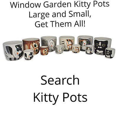 Window Garden - Oreo Cat Grass Growing Kit with Kitty Pot Planter - Purrfect for Cat and Pet Lovers.Wheatgrass Snack Includes Soil and Organic Seed. Top Quality, Super Cute Gift, Christmas, Mothers Day.